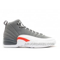 Air Jordan 12 Retro Girls Cool Grey Sale New Arrival